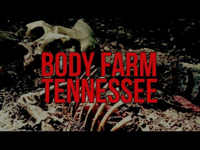 The Scariest Places On Earth: Body Farm